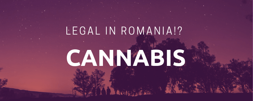Canabis– legal în România?!
