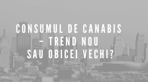 Consumul de canabis – trend nou sau obicei vechi?