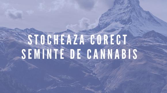 Cum stochezi corect semintele de cannabis